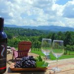 Enjoy Lush Experience Of Varietals With Natural Wineries In Hobart